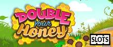 Double Your Honey Online Slots £5 No Deposit Bonus